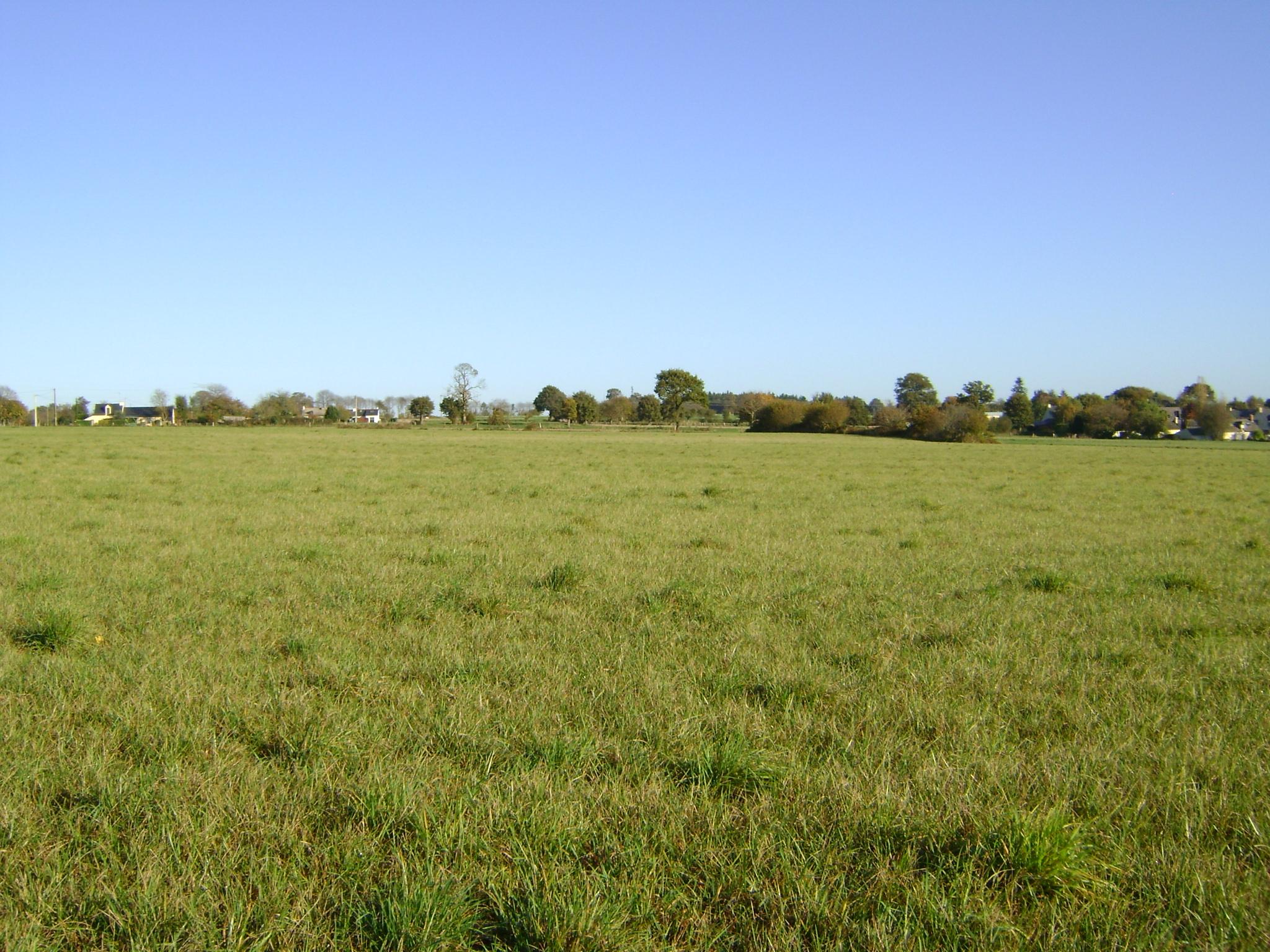 Terrain 498 m² Mordelles - Photo 1