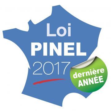 Affiche Pinel 2017